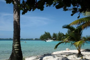 Find the perfect property with a Roatan MLS search