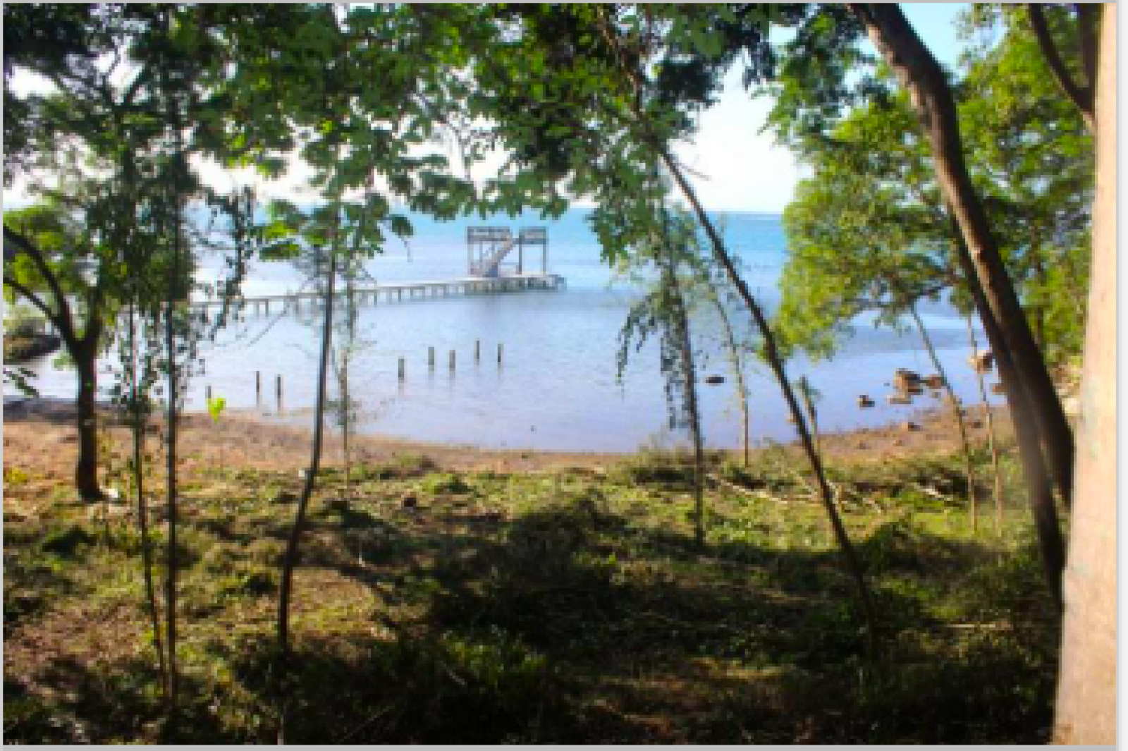 Beachfront lot with bluff and elevations to capture the views.