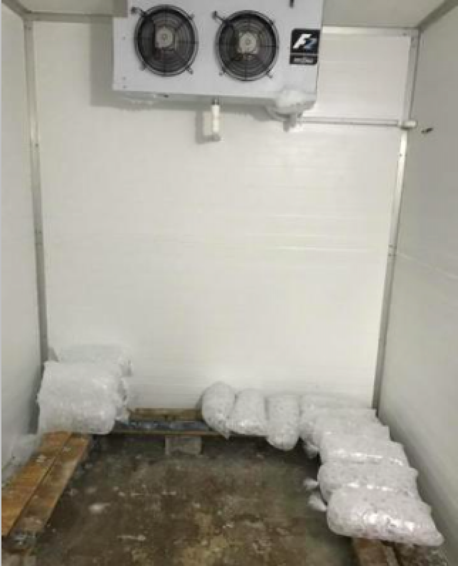 Ice made from purified water stored.