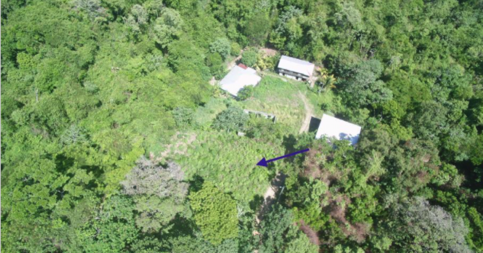 Homesite  Jungle Views Quiet neighborhood Close to Mahogany Bay Port  Close to Ferry dock  Community water  Electricity nearby.