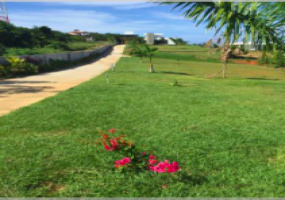 Well maintained gardens within this small development.