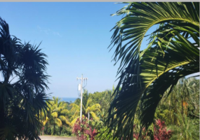 Hillside lot  Ocean views Beach Access   Quiet community  Turtling Bay Paved road Water  Electricity
