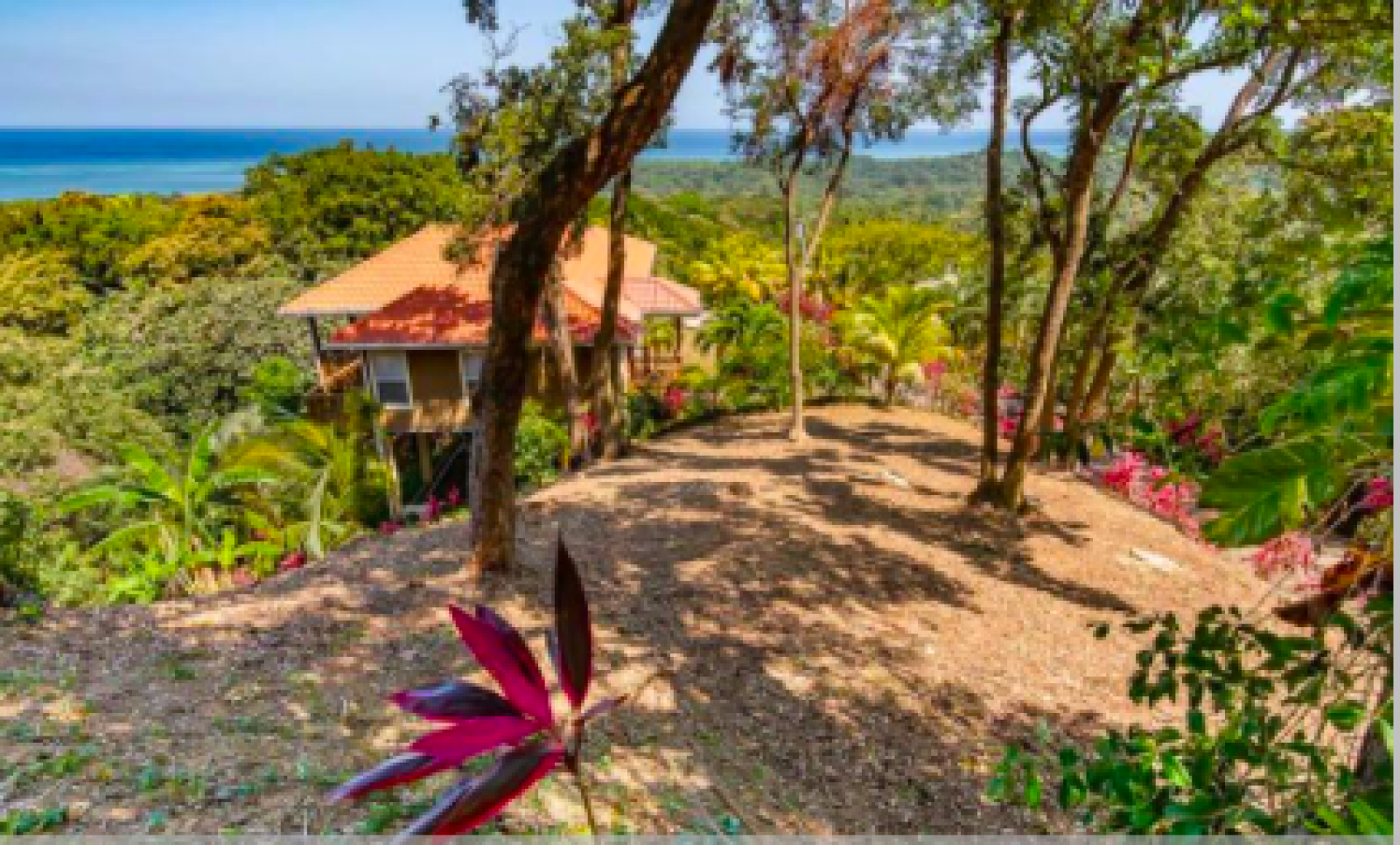 Lush tropical vegetation and sweeping views of the ocean