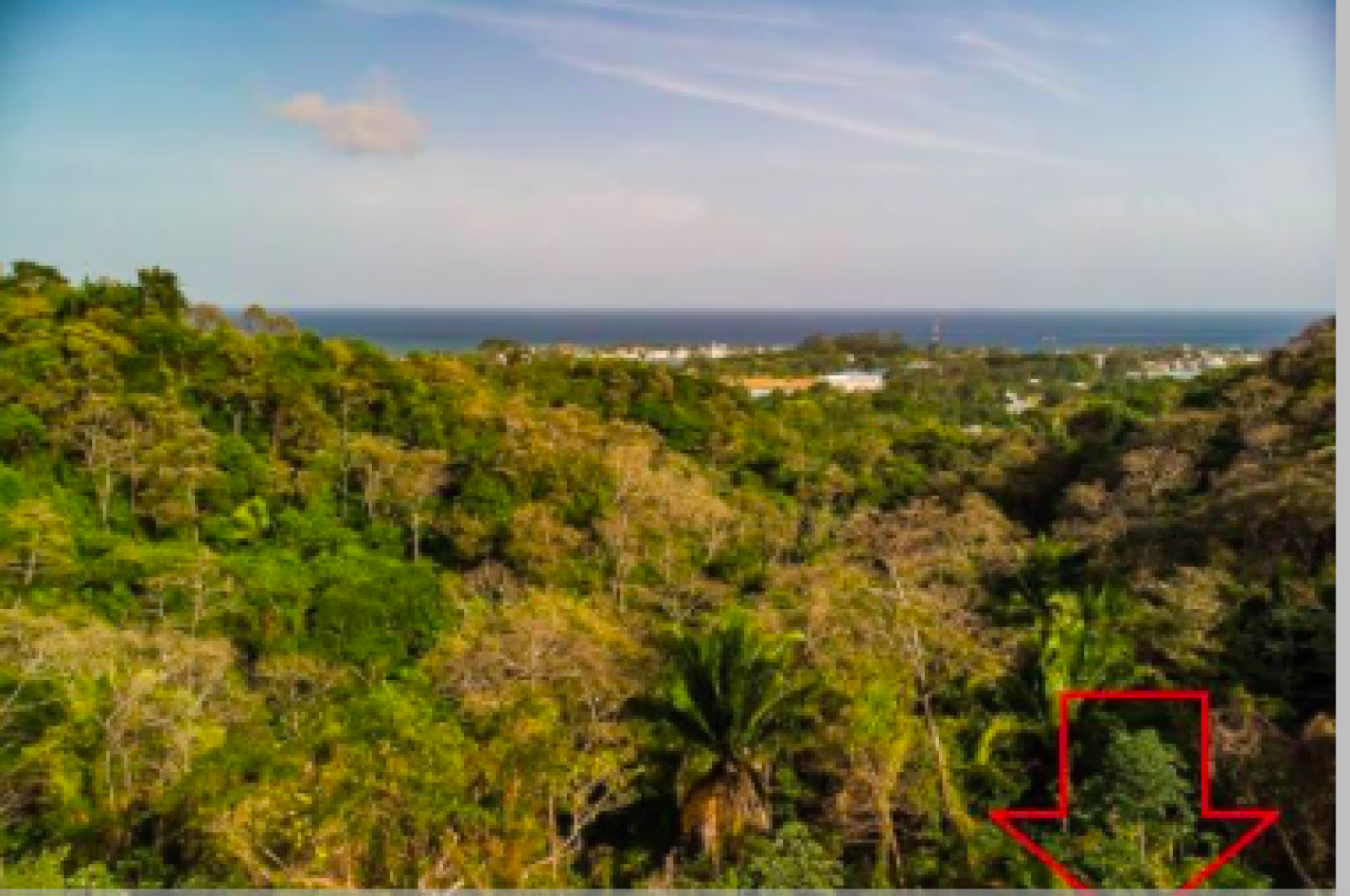 View from lot and adjoining available lot