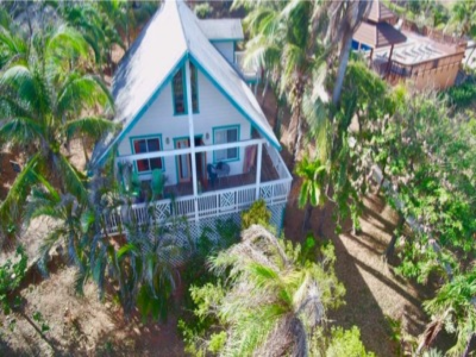 Surrounded by palms and flowers offers this tropical home privacy.