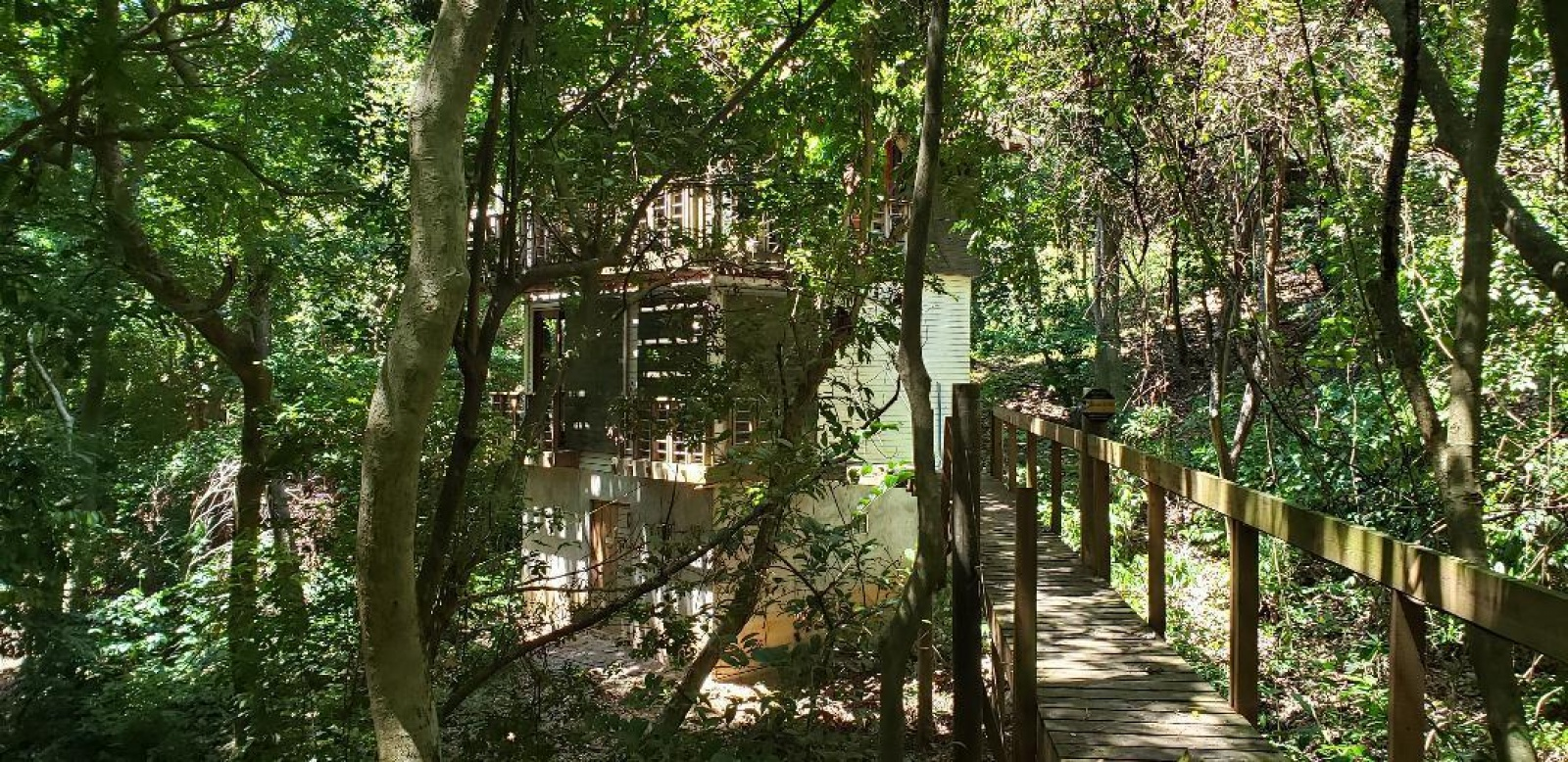 Jungle Haven Quiet Street West bay Jungle Quiet Private Close to amenities of westbay