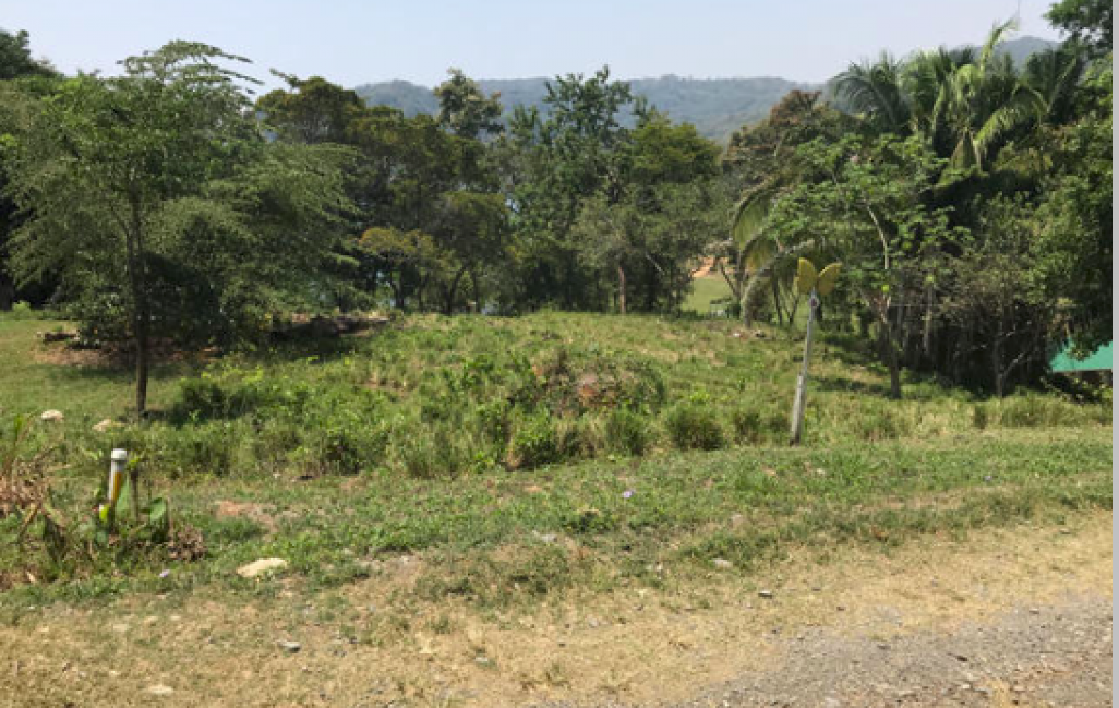 A well cut unpaved road to development and each homesite