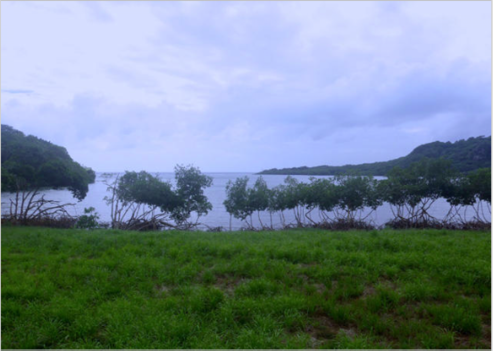 Waterfront homesite - choose your view